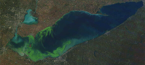 New Guidance on Harmful Algal Blooms